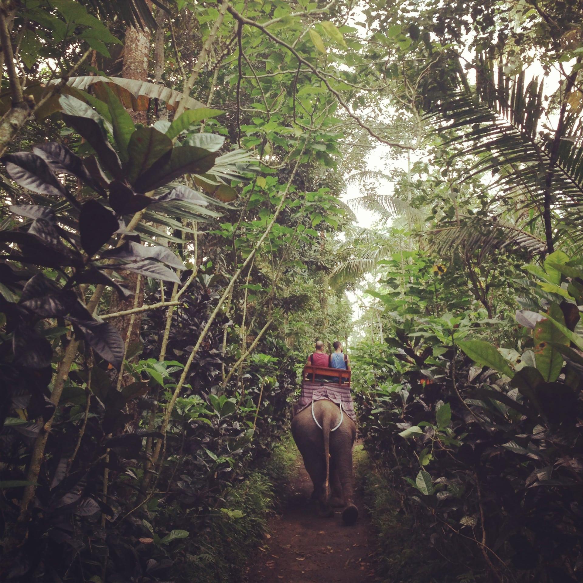NatalieNaccache_TravelCulture_0015