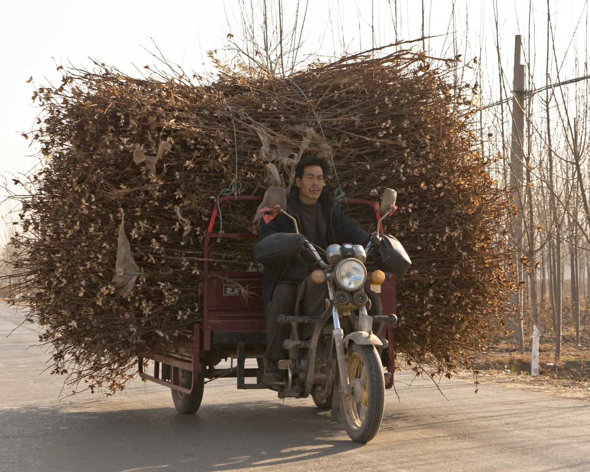 BOXING, CHINA – NOVEMBER 12, 2010